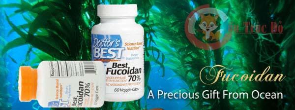 Thuốc Fucoidan chữa ung thư máu