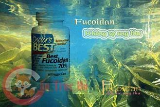 Thuốc Fucoidan chữa ung thư túi mật