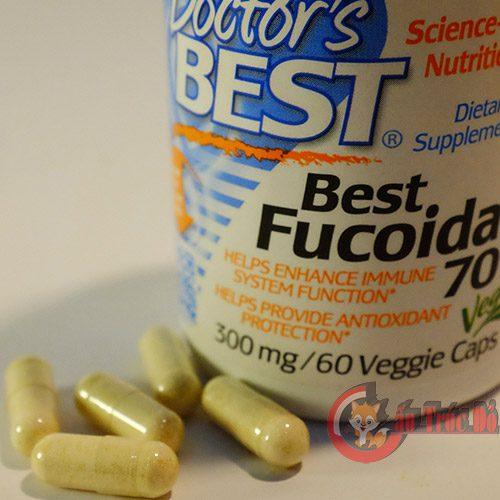 best-fucoidan-3