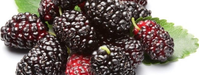 5 loại trái cây giúp giảm cân mùa hè